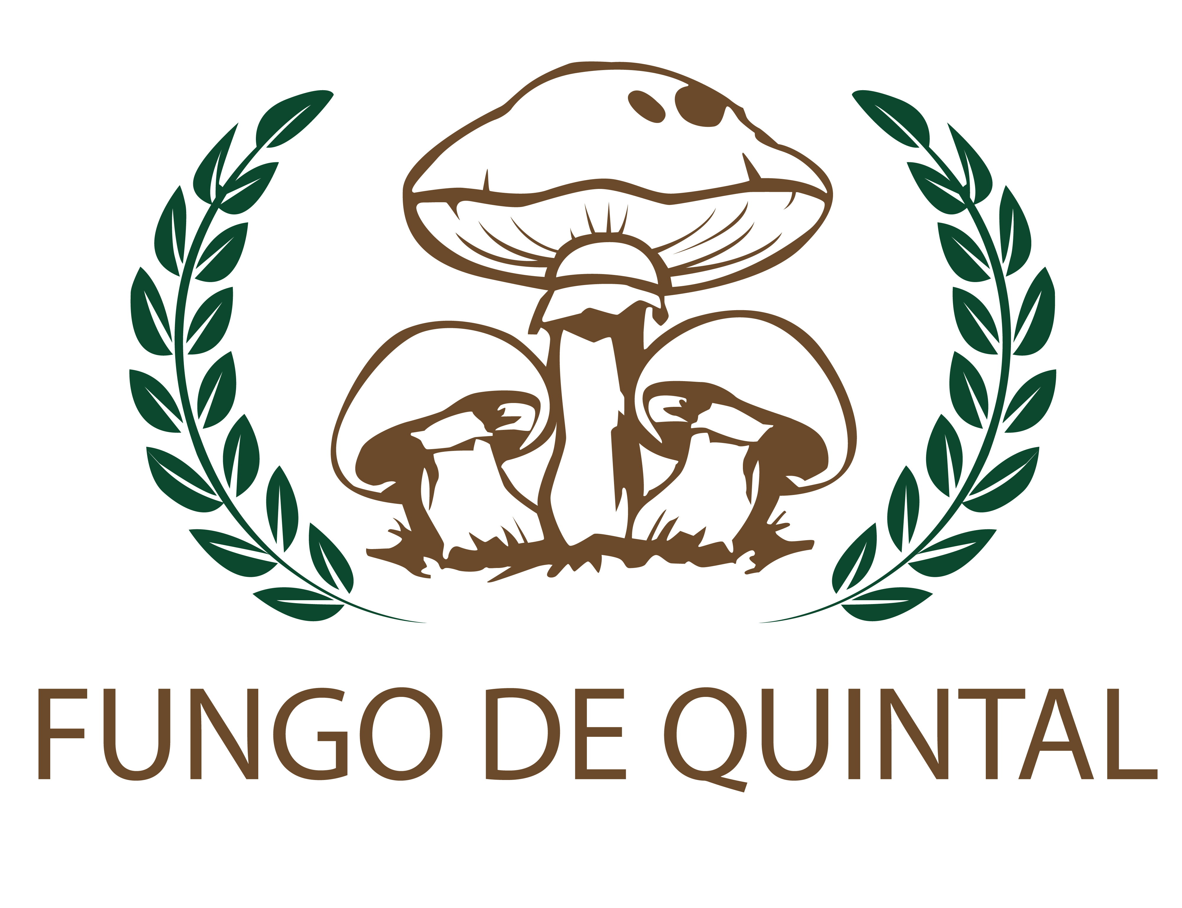 clubefungodequintal